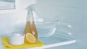 fridge cleaning products